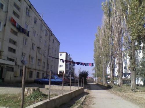 culmea-cu-rufe-iyli-s-blog