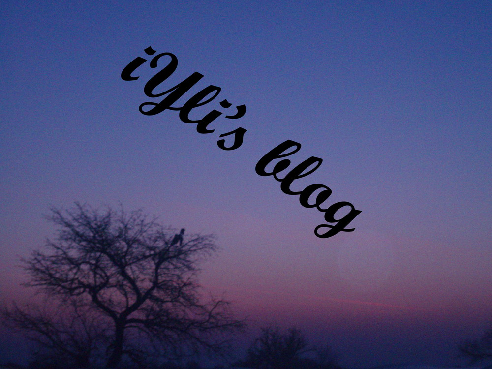 iylis-blog2