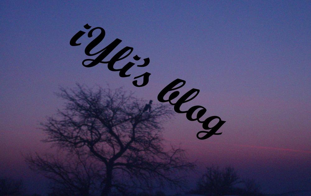 iylis-blog3