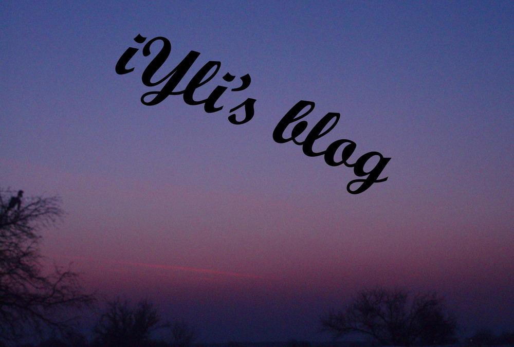 iylis-blog4